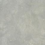 Seagrass Limestone